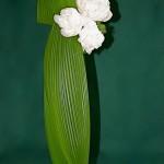 Pivoines blanches et feuilles de Cucculigo sur une flûte en verre.