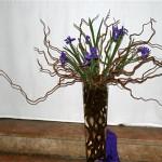 Branches de noisetier tortueux et iris, décor d'église pour la période du Carême.