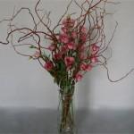 Le saule continuant à vivre dans l'eau développera des racines, accompagné ici de lysianthus roses.