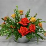 Deux variétés de roses proposent un Noël coloré.
