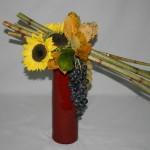 Tiges, fleurs, fruits et quelques feuilles d'automne expriment la saison des récoltes au jardin.