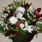 Les couleurs et la longévité de la fleur de chrysanthème sont appréciées dans les compositions florales.