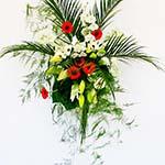 Composition murale avec palmes et asparagus plumosus sur mur blanc.