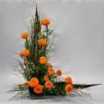 Des roses d'Inde éclairent les lignes de genets et cosses exotiques.