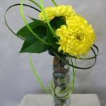 3 grosses têtes de chrysanthèmes jaunes pour une composition automnale.
