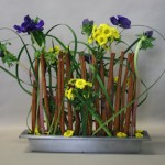 Anémones et petits chrysanthèmes animent la barrière de bâtons de cannelle.