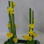 Déclinaison de jaune : tulipes, jonquille et jeu de lignes.