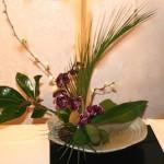 Les lignes de la composition de syle Moribana, mettent en valeur l'orchidée. Ecole Ohara
