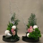Duo de Noël en vert et rose : jacinthes,oeillets de poète verts et thuya givré.