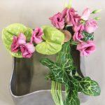 Les jolies feuilles d'arum italicum de jardin sont mises en valeur dans un original contenant ondulé.