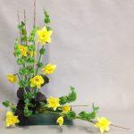 Mollucelles, jonquilles  et branches de cornouiller bourgeonnantes pour un bouquet de printemps.